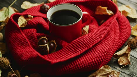 Leaves-and-nuts-near-scarf-and-hot-beverage