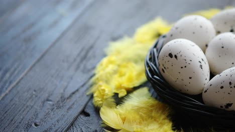 Whole-Chicken-eggs-in-a-nest-on-a-black-rustic-wooden-background-Pascua-symbols