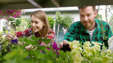 Smiling-young-man-and-woman-gardeners-taking-care-of-flowers-and-plants