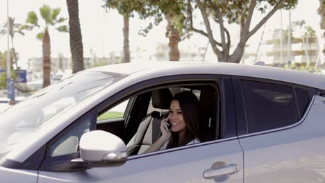 Smiling-model-talking-phone-in-car