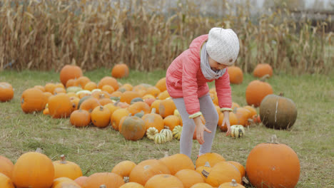 Child-collecting-pumpkins-in-yard