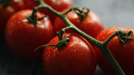 Ripe-red-cherry-tomatoes-on-branch-