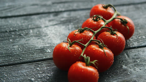 Branch-with-cherry-tomatoes-