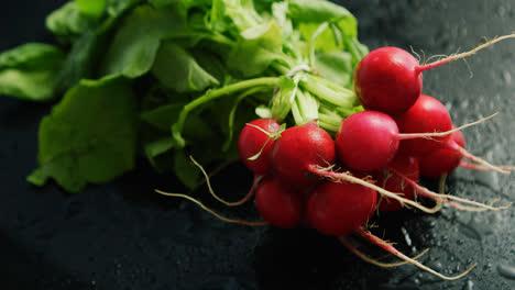 Bunch-of-ripe-radish