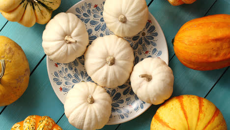 White-pumpkins-laid-on-plate