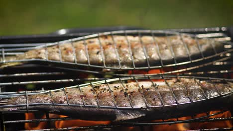 Tasty-whole-fishes-placed-on-barbecue-grill