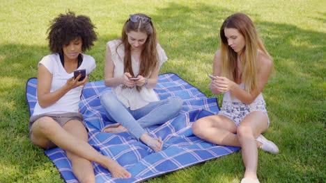 Women-browsing-smartphones-in-park