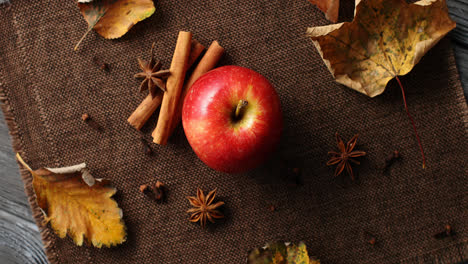 Ripe-apple-with-fallen-leaves-and-spices