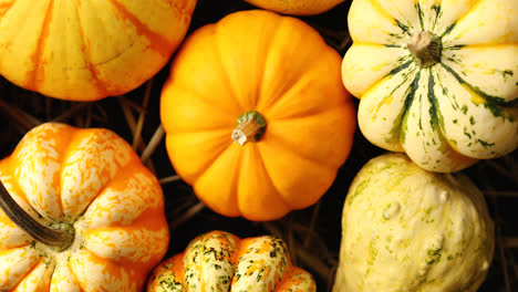 Heap-of-yellow-pumpkins