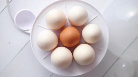 Chicken-eggs-in-a-egg-electric-cooker-on-a-white-wooden-table