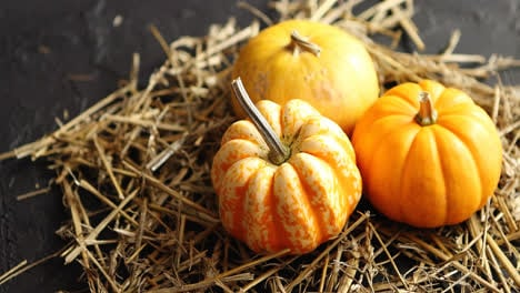 Three-pumpkins-on-pile-of-hay