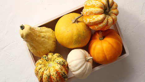 Different-pumpkins-laid-in-box