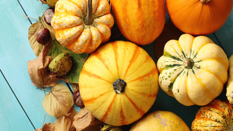 Pile-of-pumpkins-decorated-with-leaves-and-chestnuts