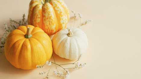 Different-sorts-of-pumpkins-and-herbs