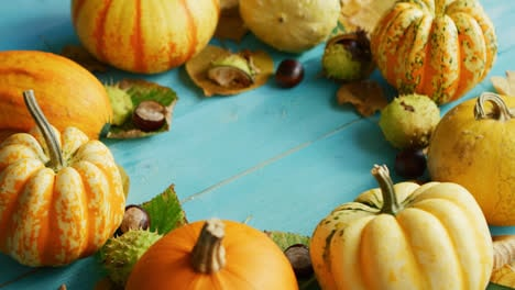Pumpkins-and-chestnuts-laid-in-circle