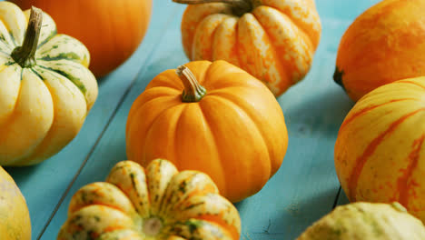 Pumpkins-laid-in-row-on-table