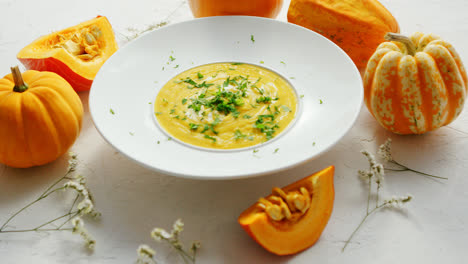Soup-in-plate-with-pumpkins-around