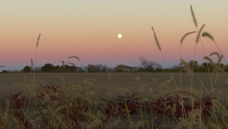Nebraska-full-moon