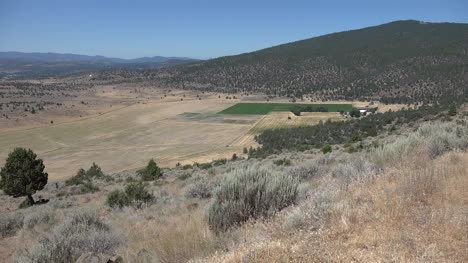 California-dry-hills-and-green-crop-in-valley