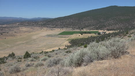 California-dry-scene-with-sagebrush-on-hill-and-crops-in-valley
