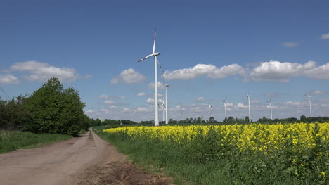 Germany-lane-past-rapeseed-field-and-wind-turbines
