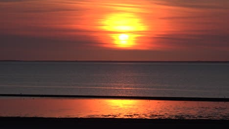 Germany-setting-sun-on-the-Wadden-Sea-with-birds-flying