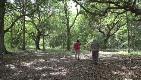 Louisiana-man-with-cane-walks-in-woods-with-boy