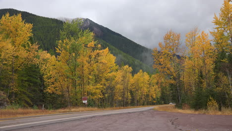 Montana-highway-with-aspens-and-car