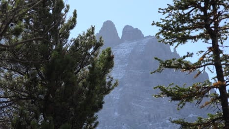 Montana-mountain-and-sparkles-on-trees