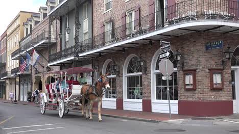 El-Carro-De-Mulas-De-Nueva-Orleans-Pasa