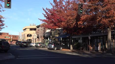 Oregon-Bend-Downtown-Con-Fall-Tree