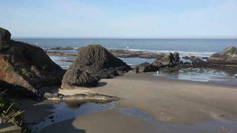 Oregon-Seal-Rocks-low-tide-view-zooms-in