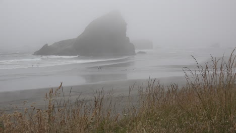 Oregon-waving-grass-and-sea-stack-in-fog