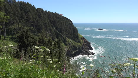 Oregon-cliff-with-sea-and-wild-flowers