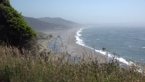 Oregon-dry-grass-fringes-a-view-of-a-stream-crossing-a-beach