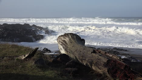 Oregon-log-and-waves-hitting-shore