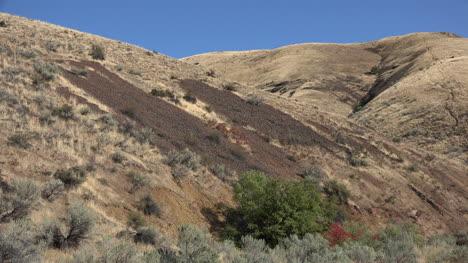 Oregon-rock-slides-on-a-grassy-hill