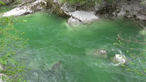 Slovenia-green-water-in-flowing-stream