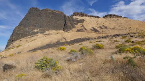 Washington-lava-cliff-rises-above-dry-grass