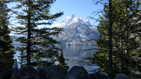 Wyoming-trees-frame-Teton-peaks