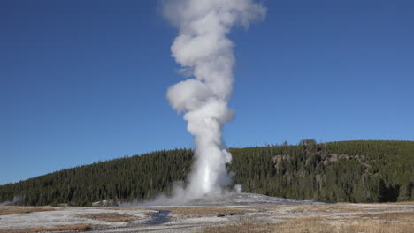 Yellowstone-Old-Faithful-eruption-and-blue-sky