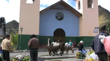 Ecuador-market-and-llamas