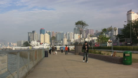 Hong-Kong-dog-park-&amp-city