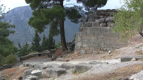 Tree-and-ruins-at-Delphi