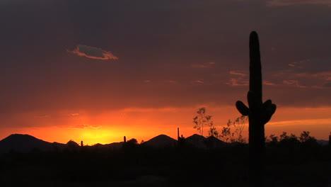 Arizona-desert-just-after-sunset