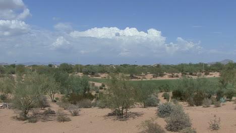 Arizona-golf-course-and-shrubs