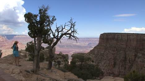 Arizona-Grand-Canyon-tourist