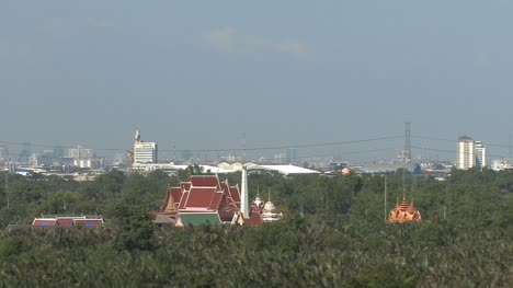 Wetland-and-temple-by-the-Chao-Phraya-River