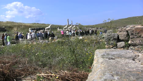 Delos-lions-and-tour-group