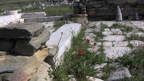 Delos-stone-ruins-with-poppies